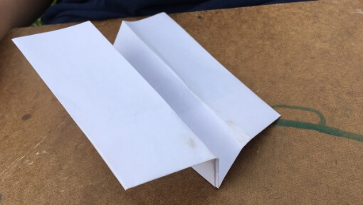 The Duck: An Acrobatic, Glider Paper Airplane